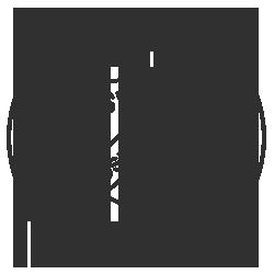 Logo Spielverein 16 Osnabrück